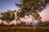 Outback Sunset D80_1367s.jpg