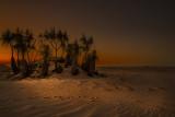 Sunset_D80_0639V2m.jpg