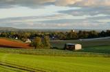 View near Halberton