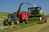 Silage collection