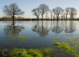 Flood water near Crediton