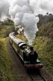 The Kingswear train in Devon