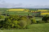 Between Bradninch and Cullompton