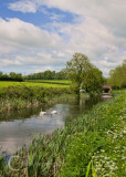 Grand Western Canal - Mid Devon, UK