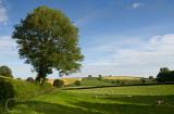 Hele Farm near Bradninch