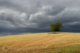 Stormy clouds near Broadclyst
