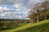A Mid Devon view near home
