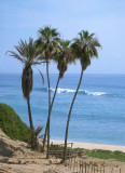East Cape Baja California Sur (MEXPHO).
