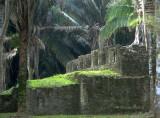 Kohunlich1 Quintana Roo (SC1)