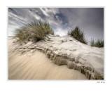 the dune-top
