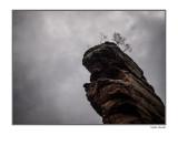 Pfalz- the rock