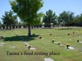 Tarina's final resting place