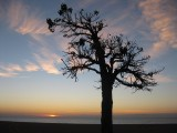 Sortida del Sol a La Costa Brava