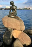 Copenhagen. The little Mermaid (Den lille havfrue)