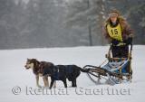 340 2 Dog Sled 1.jpg