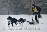 340 2 Dog Sled 6.jpg
