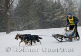 340 2 Dog Sled 8.jpg