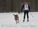 340 Skijoring 1.jpg