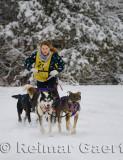 341 4 dog sled 2.jpg