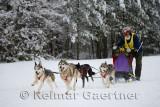 341 4 dog sled 4.jpg