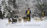 341 6 dog sled 14.jpg