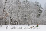 341 Snow sled 2.jpg