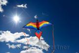 348 Kite 3.jpg