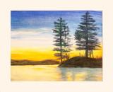 Pine Trees.on.Lake