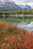 Herbert Lake Scene