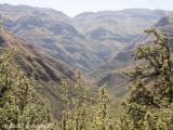 IMG_4814001.jpg - Maliba | Maluti Mountains