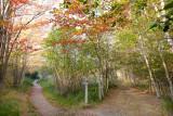 Hemlock & Jessup Trails