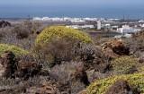 paisaje de Lanzarote