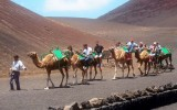 visit volcanoes on camel