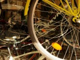 biciclette e Pinocchio