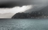 stormy Manarolla
