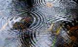 des ronds dans l'eau # 2