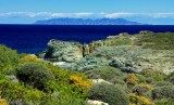 Capraia isola at the horizon