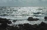 the wild sea