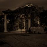 2015-03 Night Shoot