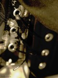 Detail of the Corset