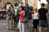 Firenze.Horses and the little girl 1