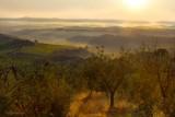 Tuscany.From my balcony .Day 2