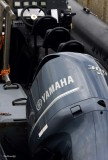 The Outboard of 600HP