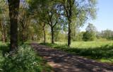 Aalden_13-5-2009 (230).JPG