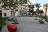 Haifa_31-10-2013 (18).JPG