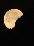 Moonset at the Dejenstock