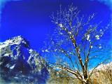 Winter - View to the Glärnisch