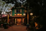 Animal Kingdom store at dusk