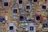 Wall in Parque de las Palomas (Pigeons)