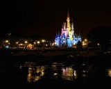 Cinderella's castle and wet sidewalks, night
